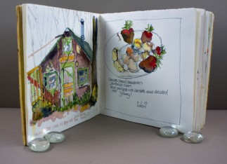 An Illustrated Journal by Barbara Parke Wolff