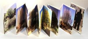 Seasons by Raphiel Benjamin
