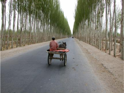 A portion of the Silk and Paper Road, Khotan, Xinjiang, China, 2002.