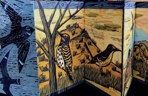 New Mexico Birds by Lynn Grimes